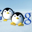 Significant Impact Of Penguin Recovery SEO Services